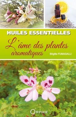 Huiles essentielles : l'âme des plantes aromatiques
