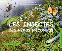 Les insectes ces héros méconnus
