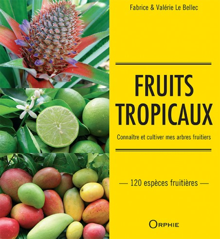 Fruits tropicaux - Editions Orphie